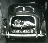 Rear view of a 1948 Austin 16