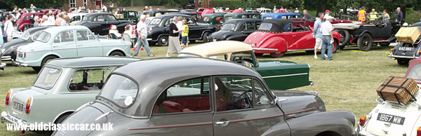 Gathering of old cars