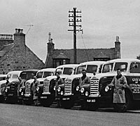 Line-up of Ford Thames 4D lorries