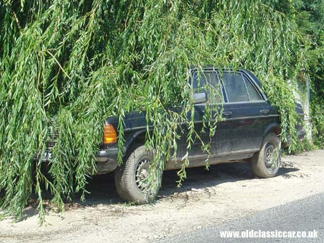 Today's photo description: This W123-series Mercedes-Benz is slowly being engulfed by the neighbouring undergrowth.